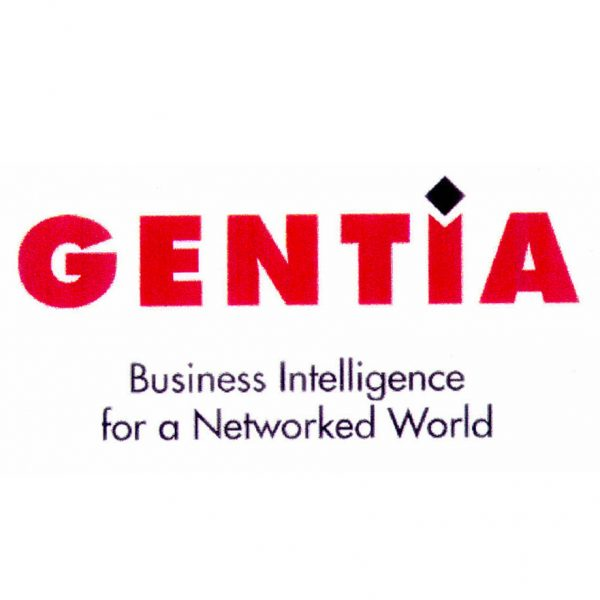 Excel in Business About Us Page - Gentia