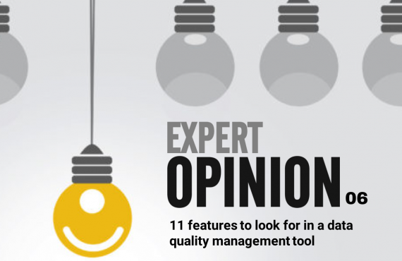 Expert Opinion 06 - 11 features to look for in a data quality management tool